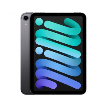 iPad mini (6th Gen), 256GB, Space Gray, Cellular