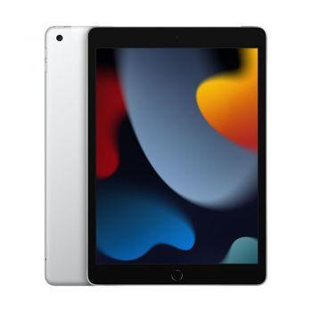 iPad (9th Gen), 256GB, Silver, Cellular